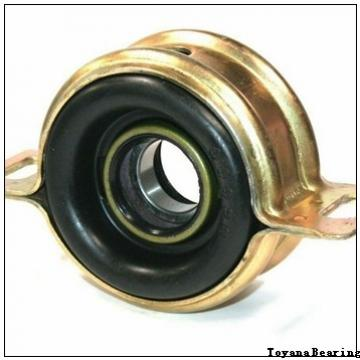 Toyana GW 017 plain bearings