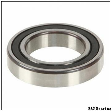300 mm x 460 mm x 118 mm  FAG 23060-E1-K spherical roller bearings